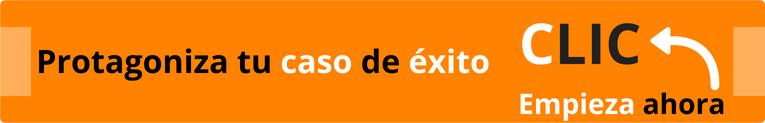Caso de éxito cambio de marca, branding web y SEO.
