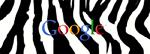 Googlezebra1