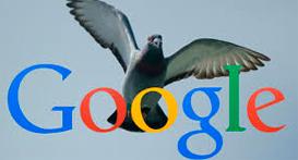 google-pigeon-home